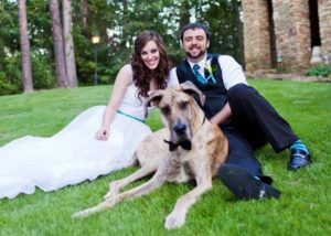 A bride and groom on a lawn with a big dog.